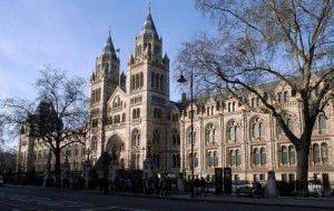 Музей естественной истории в Лондоне  – Музей природоведения