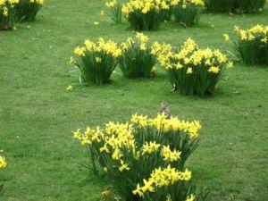 Главный праздник весны – Пасха, чаще всего приходится на март или начало апреля, многие мероприятия приурочены к этой дате