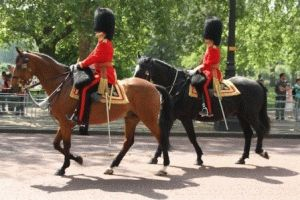 Вынос знамени (Trooping the Colour)
