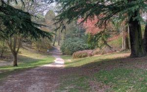windsor park виндзорский парк