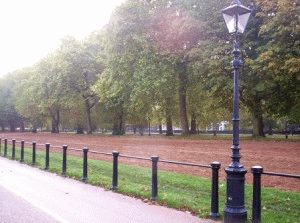 Hyde Park Rotten Row Гнилой ряд - искаженная французская фраза Route de Roi - Дорога короля
