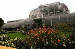 Kew Gardens Королевский ботанический сад Кью Лондон фото