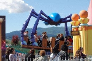 Ronnie - паук эльфов аттракцион фото