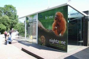 london-zoo Стоимость билета в Лондонский зоопарк