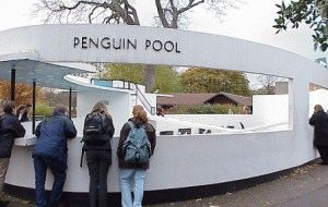 london-zoo Пингвиний бассейн The Penguin Pool