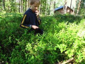 Финляндия – великолепное место для отдыха с детьми