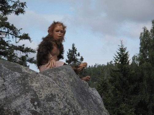 пейзаж как за миллион лет до нашей эры на Коли Финляндия фото