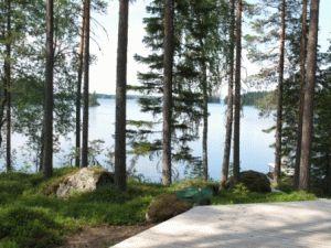 коттедж в финляндии фото природа вокруг