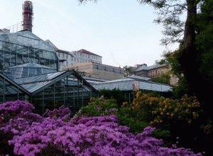 ботанический сад в праге как добраться