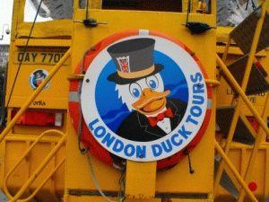 london duck лондонский утенок фото