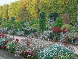 сад лекарственных трав париж фото