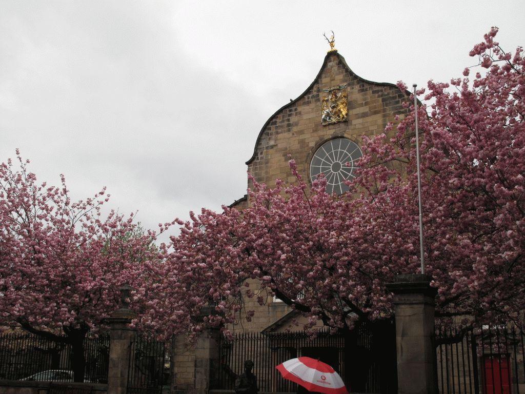 эдинбург церковь фото