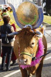 корова на карнавале в Париже фото