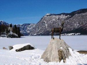 Горнолыжные курорты Словении Бохинь фото