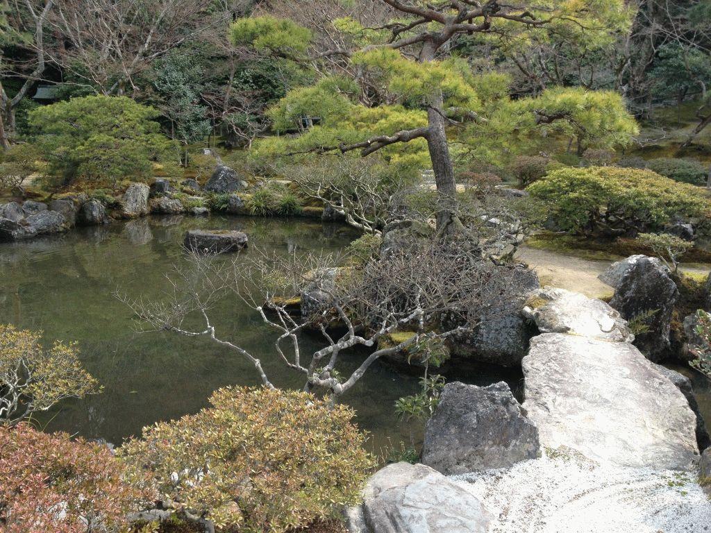 сад с прудом Киото фото