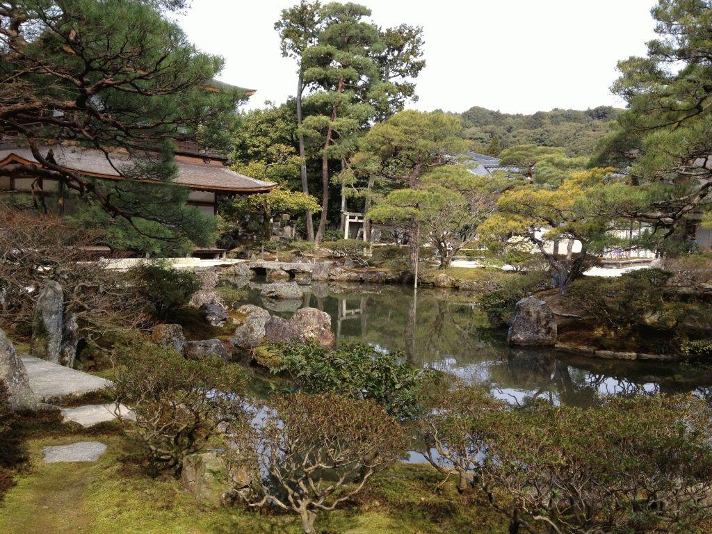 храм гинкакудзи киото фото япония