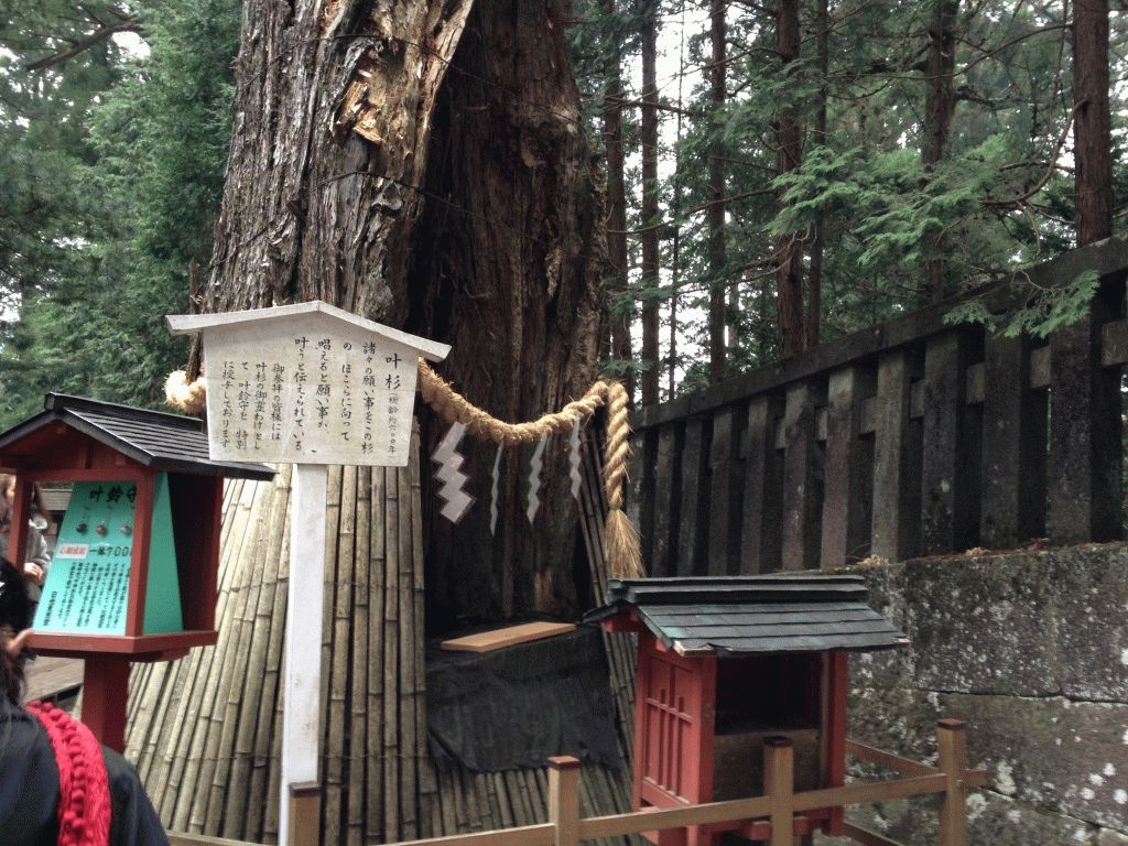 гробница Иэясу Никко фото япония