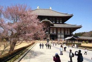 Буддизм в Японии фото храм