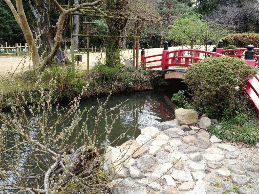 Ботанический сад Нара Япония фото