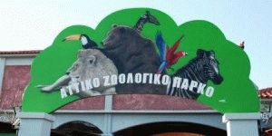 Афинский зоопарк фото
