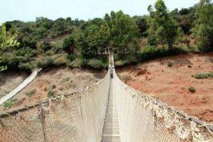 сафари парк испания дорога фото