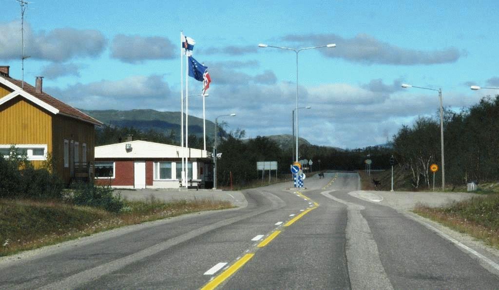 граница олени на дороге норвегия фото