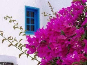 Испания в мае фото