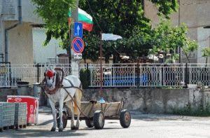 отдых в городе Обзор Болгария фото