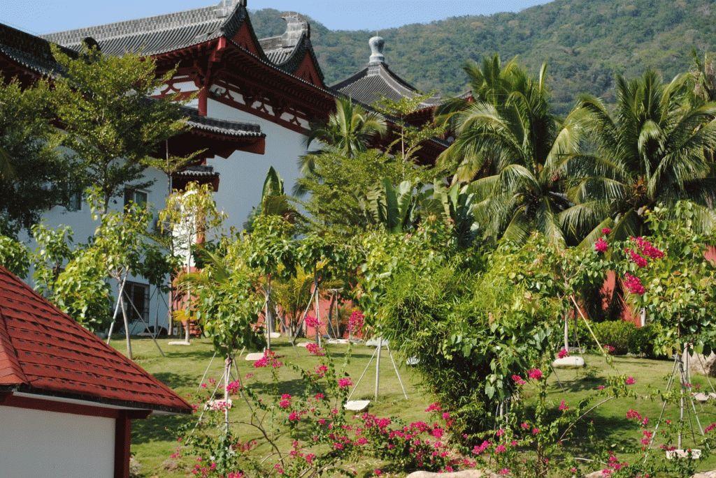 Центр Буддизма хайнань китай фото