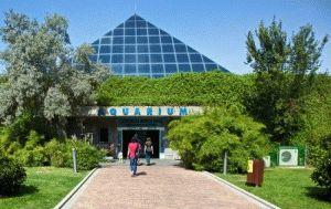 аквариум в Мадриде фото