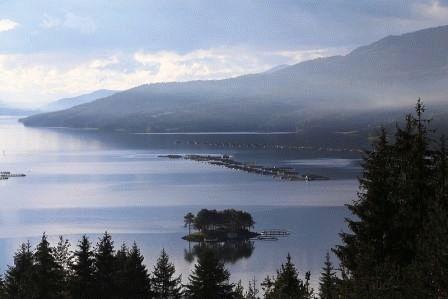 озеро доспат болгария фото