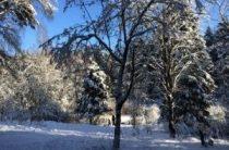 Куда поехать отдыхать в январе: фестивали снега и скидок