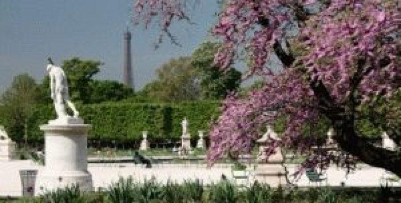 Сад Тюильри (Jardin des Tuileries) – зеленый оазис Парижа