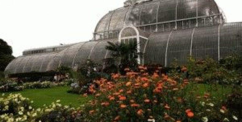 Королевский ботанический сад Кью (Royal Botanic Gardens Kew)