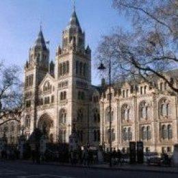 Музей естественной истории в Лондоне (Natural History Museum, London)
