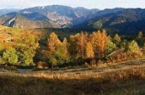 Сельский туризм в Болгарии. Село Борино и окрестности
