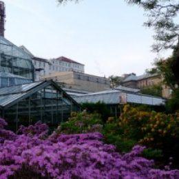 Ботанический сад в Праге – прогулки в любой сезон