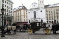 Что посмотреть с ребенком в Вене обязательно и не очень