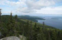 Национальный парк Коли, Финляндия — фото
