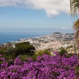 Отдых на острове Мадейра (Португалия) – достопримечательности, созданные природой