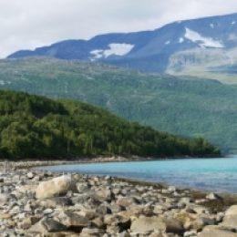 Куда поехать отдыхать в июле: фьорды, музыка и лаванда