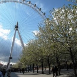 Куда поехать отдыхать в марте: весенние курорты и события