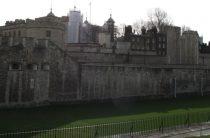 Тауэр в Лондоне (Tower of London) – экскурсия с детьми