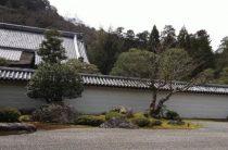 Что посмотреть в Японии с ребенком – планируем маршрут